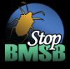stopbmsb-logo