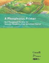 A Phosphorus Primer
