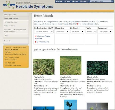 UCIPM Herbicide Symptomology Photo Repository