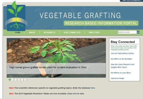 Vegetable Grafting website