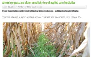 Annual rye-grass and clover sensitivity to soil applied corn herbicides