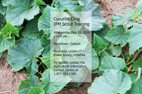 Cucurbit IPM Scout Training