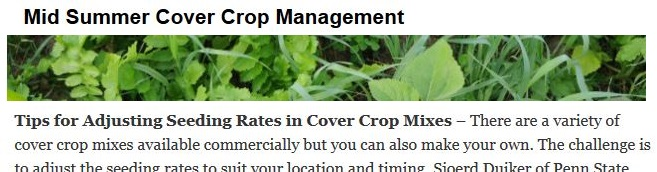 Mid Summer Cover Crop Management