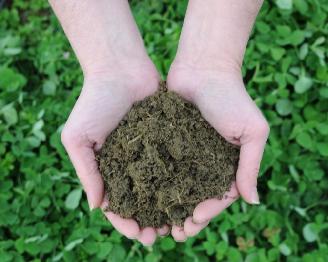 Developing an Agricultural Soil Health and Conservation Strategy for Ontario