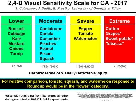 2,4-D Visual Sensitivity Scale UGa