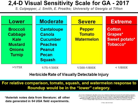 2,4-D Visual Sensitivity Scale UGa