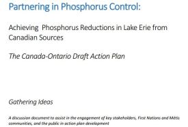 Partnering in Phosphorus Control Draft Action Plan