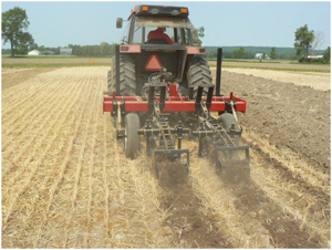 Strip tillage operation prior to sweet corn planting. Source D. Brainard MSU