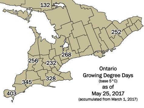 Ontario DD Map May 25