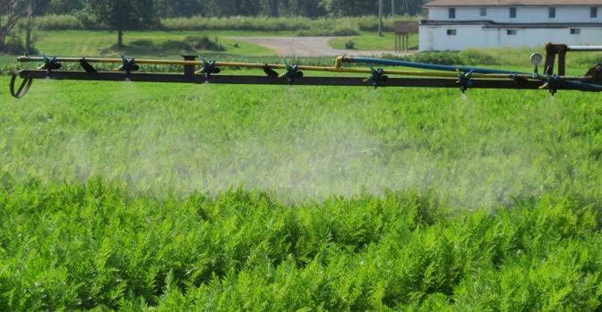 Nozzle choice in vegetable crops – an Australian perspective